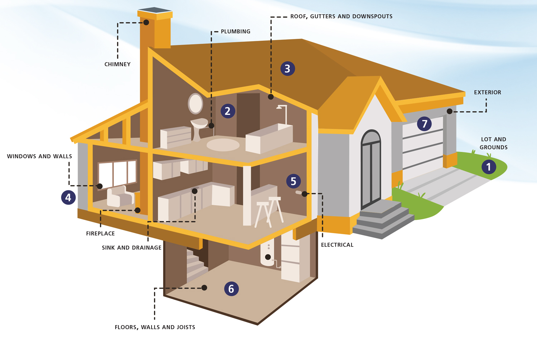 inspection services illustration